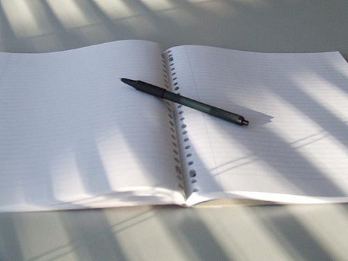 zeszyt z długopisem